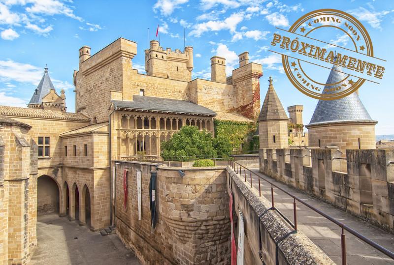 Olite Palacio Real